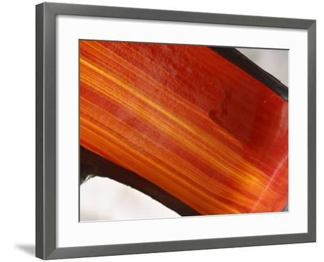Close-up of Bright Orange Streaks of Paint--Framed Art Print