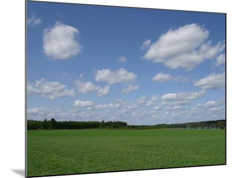 An Expanse of Lush Green Grass with Blue Sky and Flutty Clouds by a River--Mounted Photographic Print