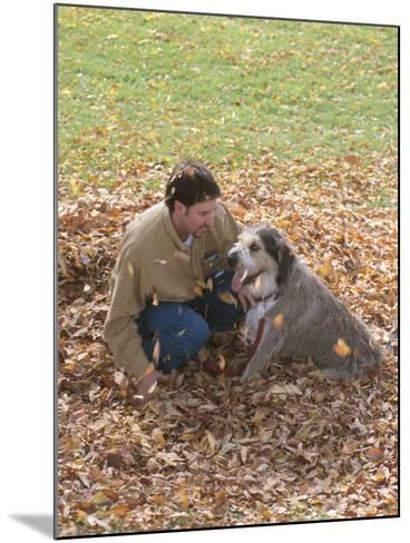Man Playing with Dog in Autumn Leaves--Mounted Photographic Print