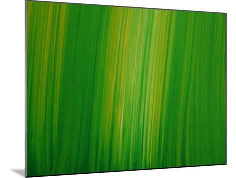 Abstract Background--Mounted Photographic Print