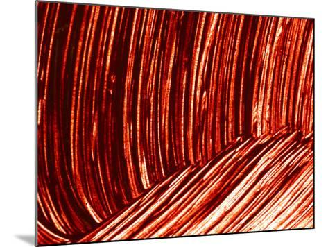 Close-up of Dark Red Paint Brushed into Swirls--Mounted Photographic Print