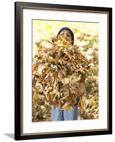 Little Boy Carrying Huge Pile of Leaves--Framed Art Print