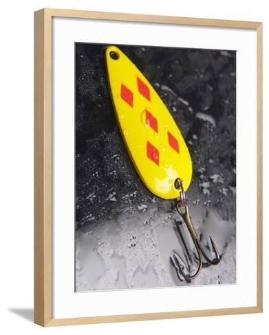 Wet Colorful Fishing Lure with Hooks--Framed Art Print