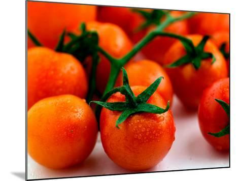 Display of Delicious and Beautiful Red Cherry Tomatoes on Vine--Mounted Photographic Print