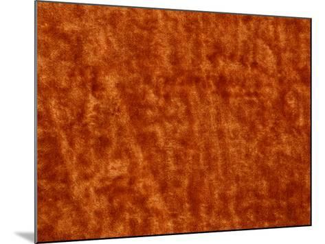 Burnt Orange Colored Surface Covered with Mottled and Blotchy Pattern--Mounted Photographic Print