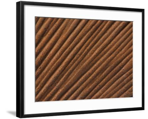 Close-Up of Grooved Pattern and Texture in Wood--Framed Art Print