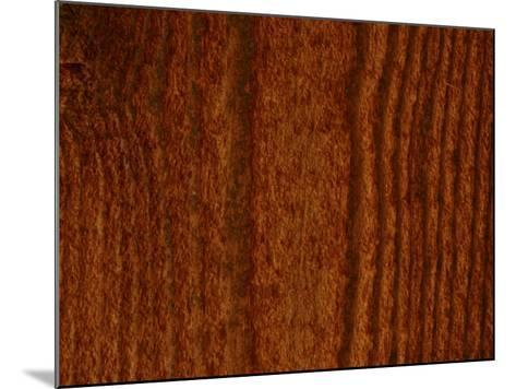 Close-Up of Vertical Woodgrain Pattern--Mounted Photographic Print