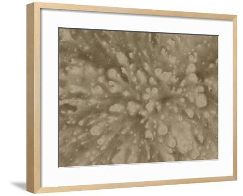 Close-Up of Explosive Abstract Splash Pattern in Gray--Framed Art Print