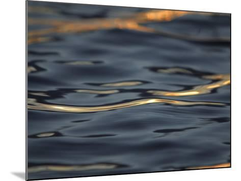 Rippling Water Glinting Light in a Reflection--Mounted Photographic Print