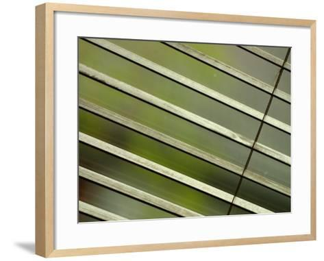 Tilted and Cropped View of Venetian Blind--Framed Art Print