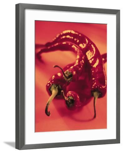Close-Up of Fresh and Hot Chili--Framed Art Print