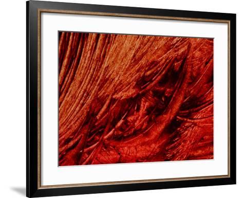 Dark, Black Brush Strokes--Framed Art Print