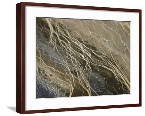 Environmental Pollen in Water--Framed Art Print