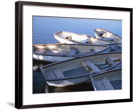 Empty Rowboats Moored Together on Tranquil Water--Framed Art Print