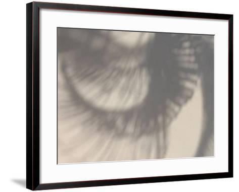 Shadows of Curled Palm Leaves--Framed Art Print