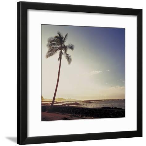 Silhouette of a Single Palm Tree on a Beach--Framed Art Print