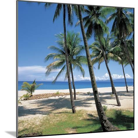 Tall Tropical Palm Trees on Sandy Beach--Mounted Photographic Print