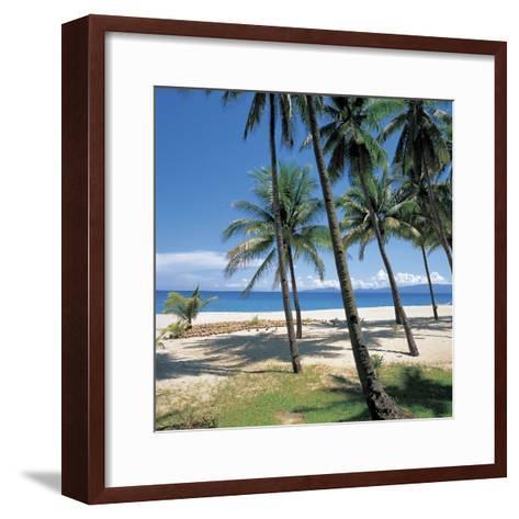 Tall Tropical Palm Trees on Sandy Beach--Framed Art Print