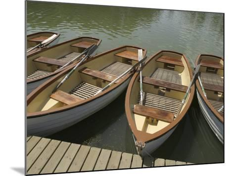 Row of Docked Rowboats--Mounted Photographic Print