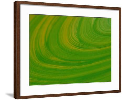 Green Background with Circular Striations--Framed Art Print