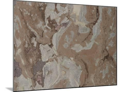 Close-Up of a Mottled Marble Surface--Mounted Photographic Print