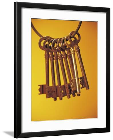 Group of Brass Keys on Keyring--Framed Art Print