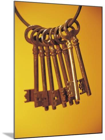 Group of Brass Keys on Keyring--Mounted Photographic Print