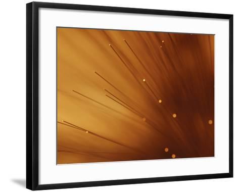 Fiber Optic Wires in Bright and Vibrant Orange Light--Framed Art Print