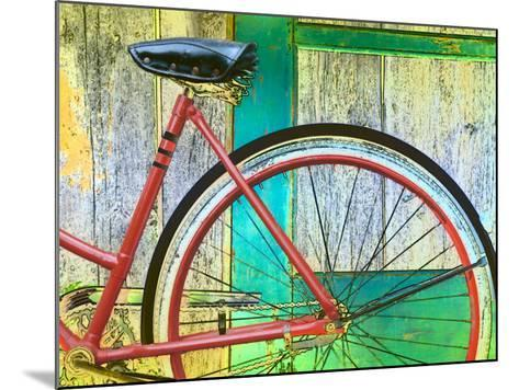 Bicycle Resting Against Colorful Barn Door--Mounted Photographic Print