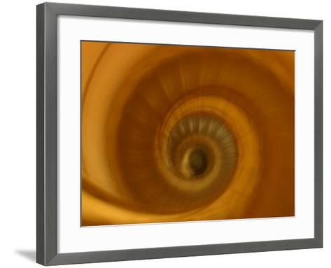 View of Spiral Staircase Indoors in Paris, France--Framed Art Print