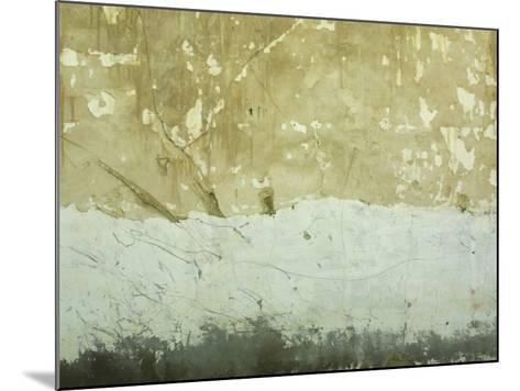 Close-Up of Weathered and Rundown Cement Wall--Mounted Photographic Print