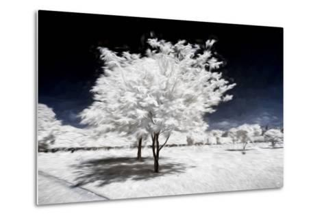 Beauty Winter III - In the Style of Oil Painting-Philippe Hugonnard-Metal Print