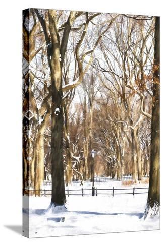 Snow in Central Park-Philippe Hugonnard-Stretched Canvas Print