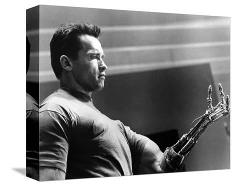 Terminator 2: Judgment Day--Stretched Canvas Print
