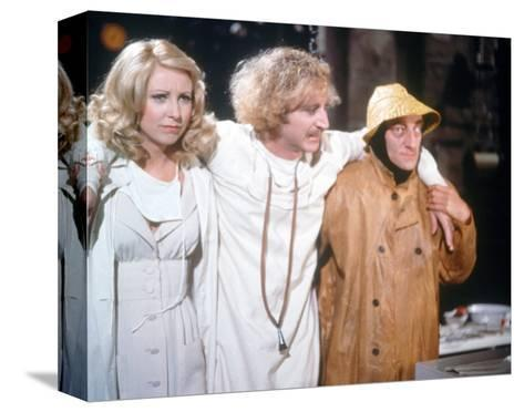 Young Frankenstein--Stretched Canvas Print