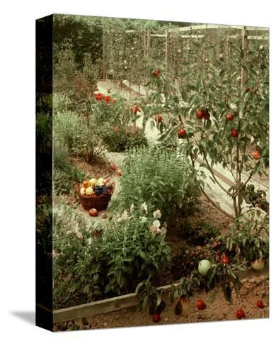 House & Garden - January 1956-Andr? Kert?sz-Stretched Canvas Print