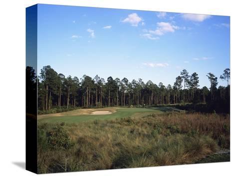 LPGA Legends Golf Course, Hole 4-Stephen Szurlej-Stretched Canvas Print