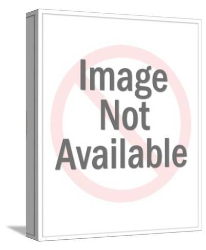 Golf Digest-Stephen Szurlej-Stretched Canvas Print