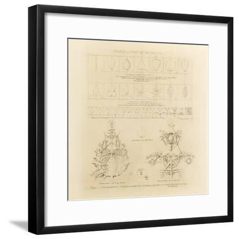 System of Architectural Ornament: Plate 2, Manipulation of the Organic, 1922-23-Louis Sullivan-Framed Art Print