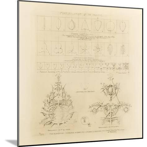 System of Architectural Ornament: Plate 2, Manipulation of the Organic, 1922-23-Louis Sullivan-Mounted Giclee Print