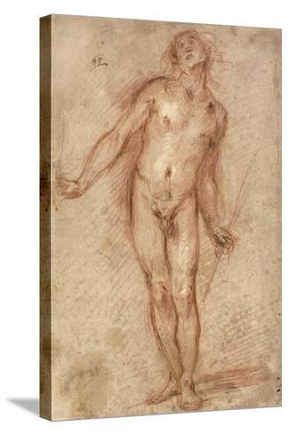 Standing Male Nude, 1637-38-Cecco Bravo-Stretched Canvas Print