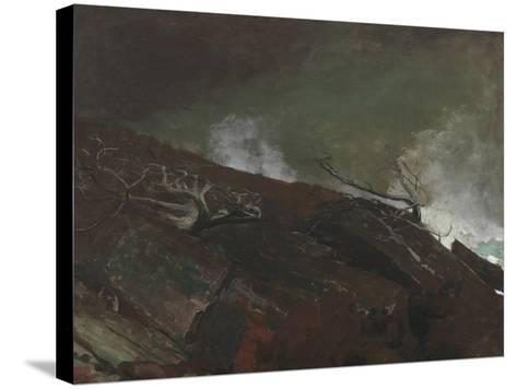 Coast of Maine, 1893-Winslow Homer-Stretched Canvas Print