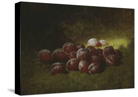 Purple Plums, 1895-Carducius Plantagenet Ream-Stretched Canvas Print