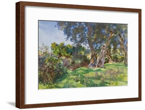 Olive Trees, Corfu-John Singer Sargent-Framed Art Print