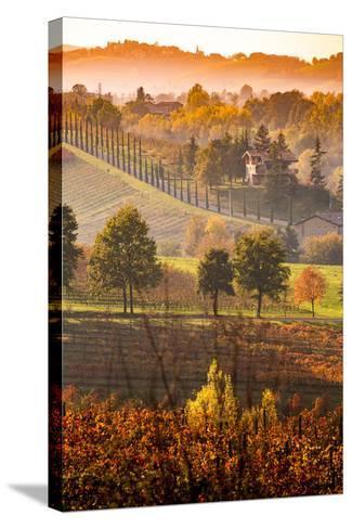 Castelvetro, Modena, Emilia Romagna-Francesco Riccardo Iacomino-Stretched Canvas Print