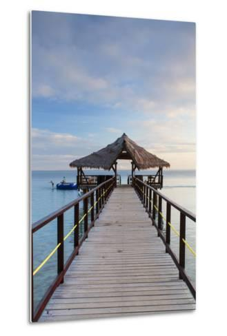 Jetty on Leleuvia Island, Lomaiviti Islands, Fiji-Ian Trower-Metal Print