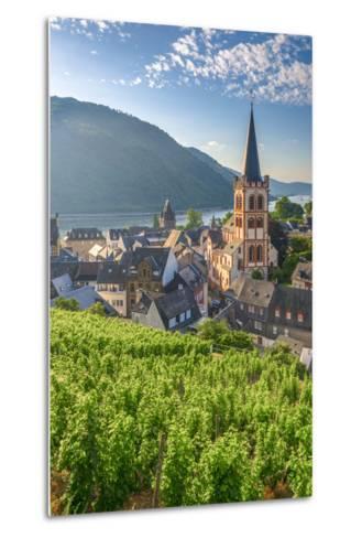 Germany, Rhineland Palatinate, River Rhine-Alan Copson-Metal Print