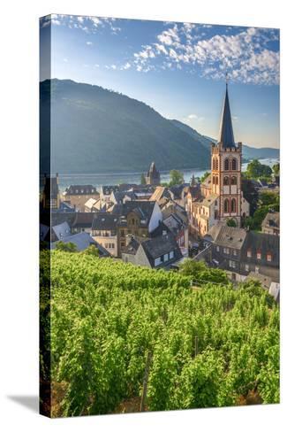 Germany, Rhineland Palatinate, River Rhine-Alan Copson-Stretched Canvas Print