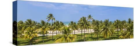 U.S.A, Miami, Miami Beach, South Beach, Ocean Drive, View over Lummus Park Towards South Beach-Jane Sweeney-Stretched Canvas Print