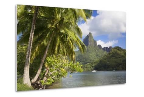 Opunohu Bay, Mo'Orea, Society Islands, French Polynesia-Ian Trower-Metal Print